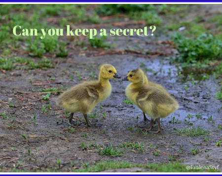 Can you keep a secret featured pic